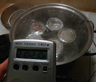 Water Bath with Digital Thermometer Readout at 210 degrees