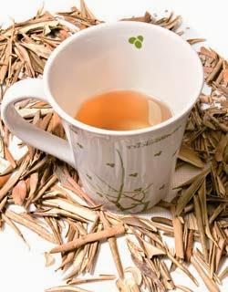 Receita do Chá de Oliveira
