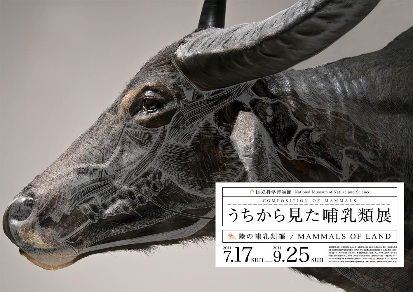 Mammals by Wataru Yoshida | World\'s National Museums and Art