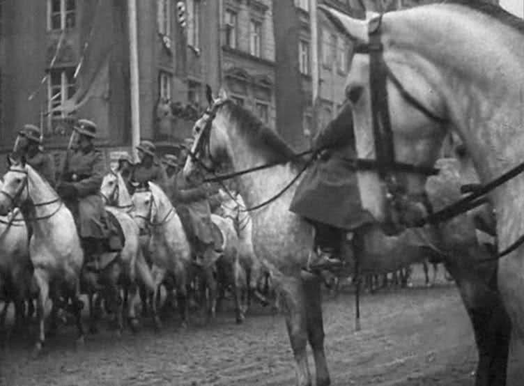 """Regimiento de Caballería SS ( futura división """"Florian Geyer"""" )"""