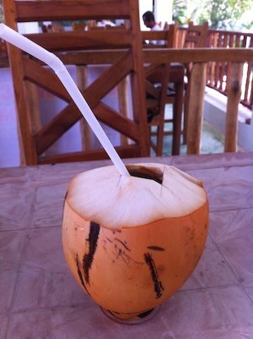 eau de coco au sri lanka
