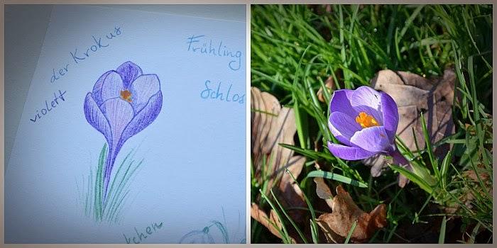 Рисовальный флешмоб, Зарисовки в лесу и парке, Граф Ольга