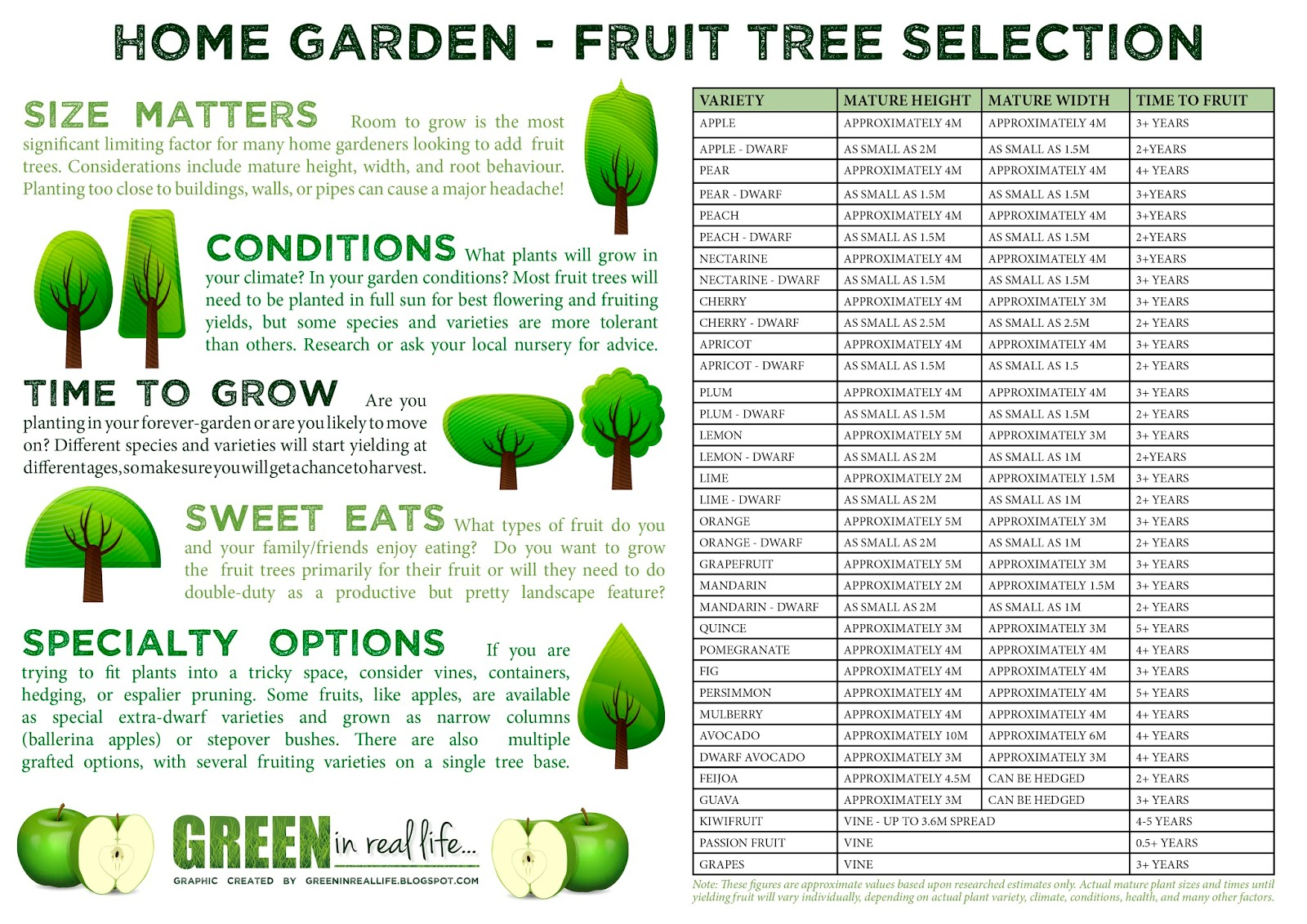 Green in Real Life Ideas for the Home Garden Fruit Tree Selection
