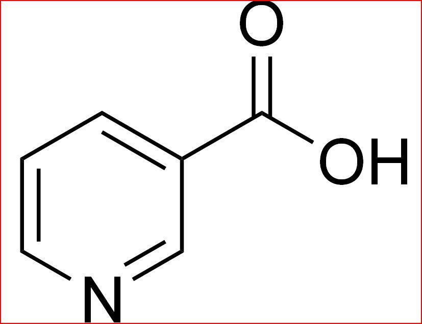 холестерин повышает тестостерон