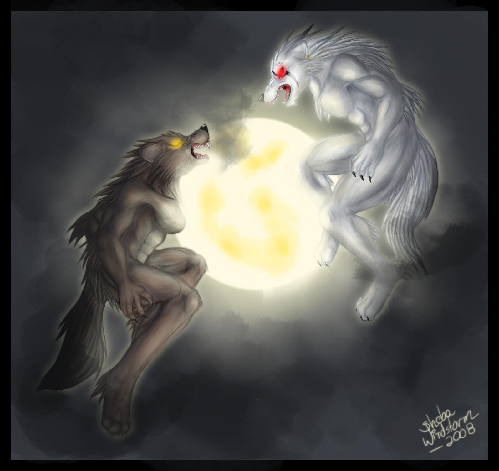 Imagenes De Hombres Lobos Con Frases UKIndex