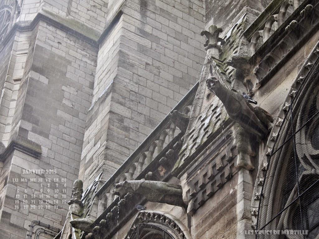 JANVIER 2015 - Wallpaper #1 : Gargouilles de Notre-Dame