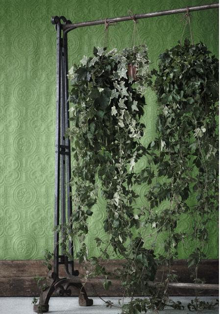 Johanna design Grön rumsavdelare