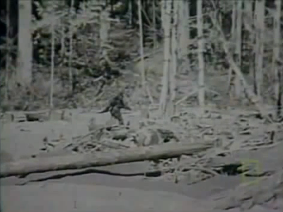 Bigfoot: Is It Real Documentary?