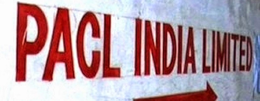 haryana, MLM NEWS, MLM hindi news, chit fund, PACL INDIA, pacl news,