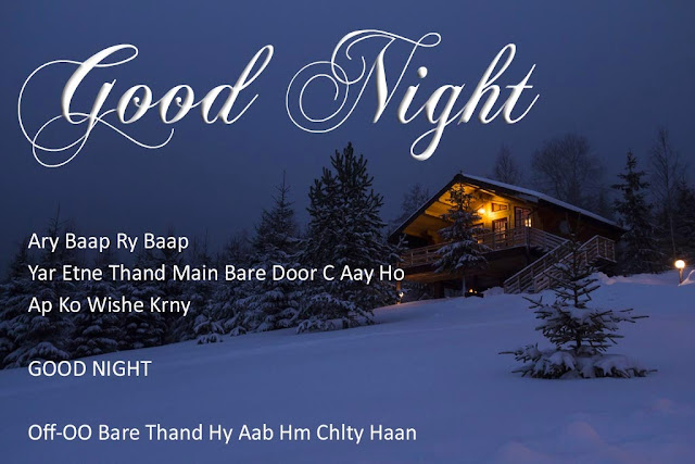 Good Night Messages In Hindi For Friends Photos
