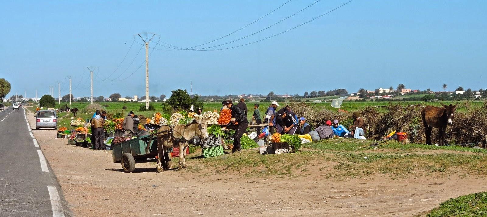 Langsam schliesst sich unsere Rundreise in Marokko | Es kommt der ...