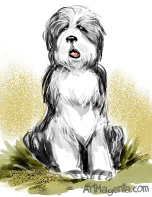 Dog: Bearded Collie by ArtMagenta