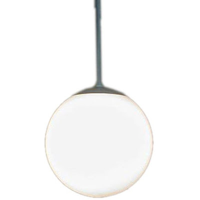 Globe Hanging Light Fixture