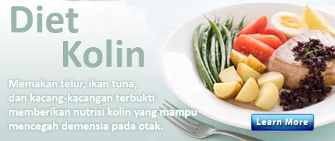 Bahan-bahan Mirip Vitamin tapi Bukan Vitamin