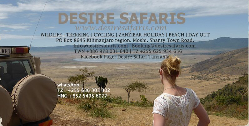 Book now any wildlife safari, trekking, cycling or any holiday for the year
