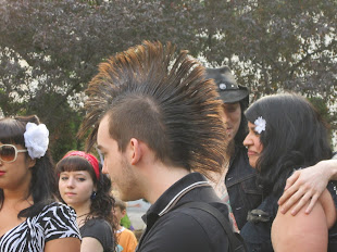 Now Here's a Real Mohawk.