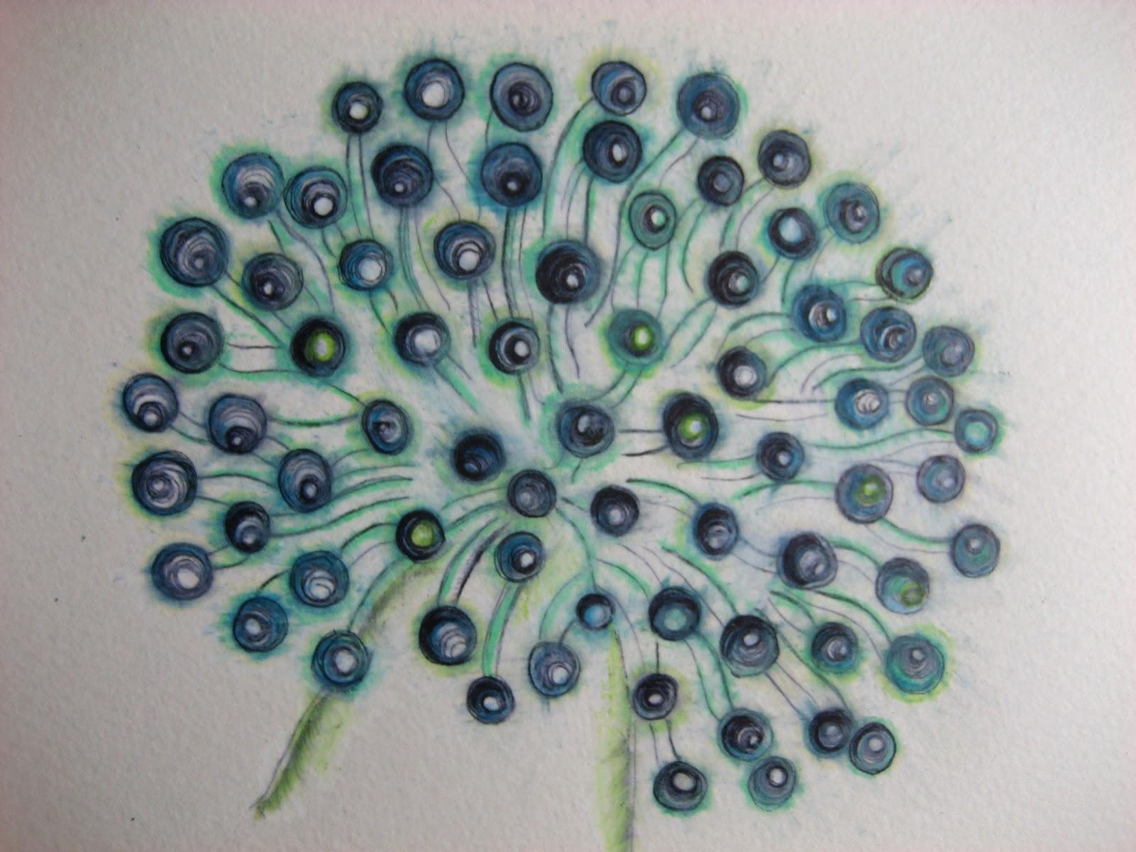 Underwater Ocean Plants DrawingsUnderwater Ocean Plants