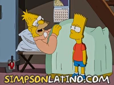 Los Simpson 24x19
