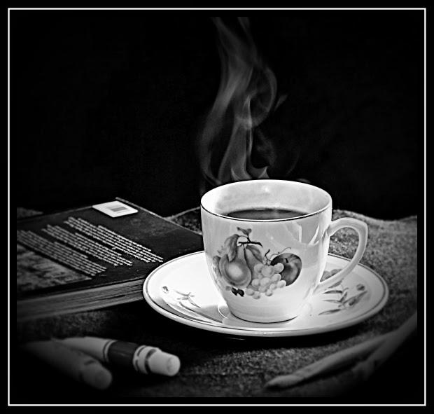 livros, literatura, cheiro, novidade, prazer de ler, odores livro novo, cheiro de livro, cheiro de livro novo