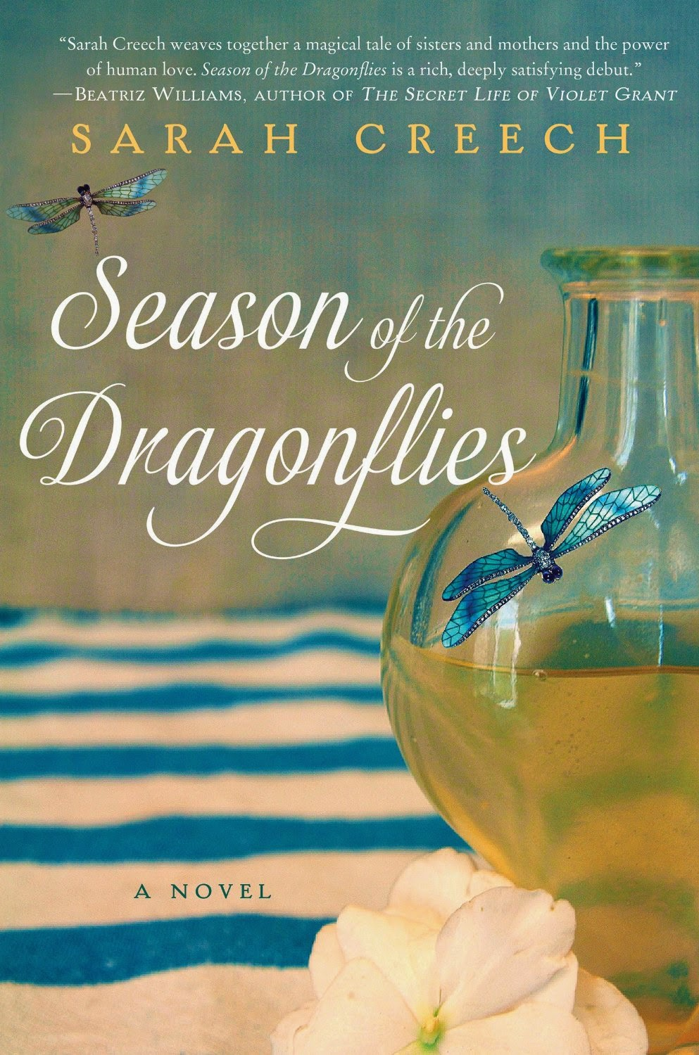 Bookfoolery season of the dragonflies by sarah creech season of the dragonflies by sarah creech kristyandbryce Image collections