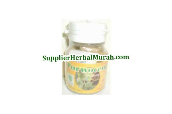 Obat Herbal Purwoceng 100%