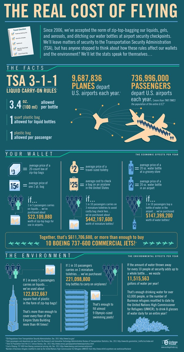 Infographic - The Real Cost Of Flying