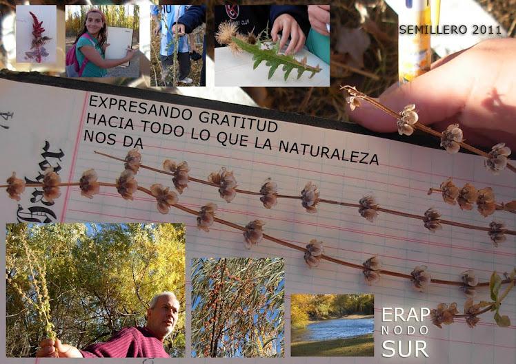 Preparando semillas para trocar en la 2da feria Nacional en el parque Pereyra Iraola