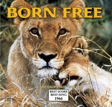 1966 film, born free about lions, one named Elsa