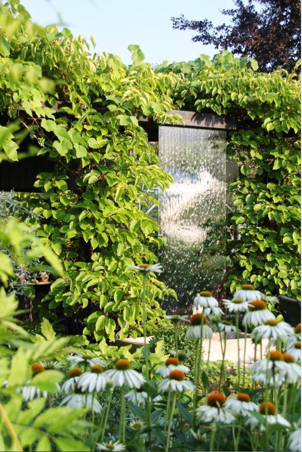 Vattenblänk i trädgården