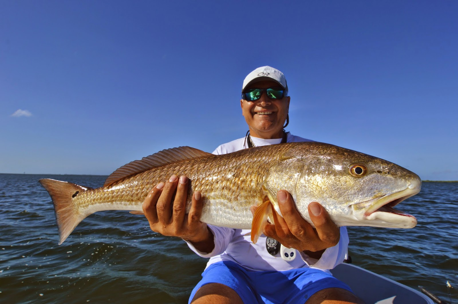 Beautiful Pine Island Bull Red Redfish on Fly