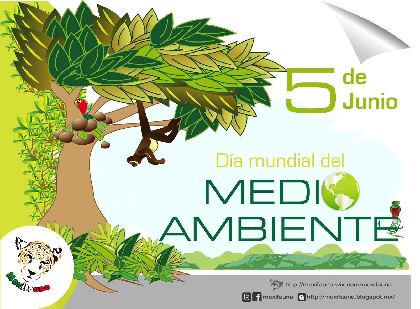 El Día Mundial del Medio Ambiente es uno de los principales