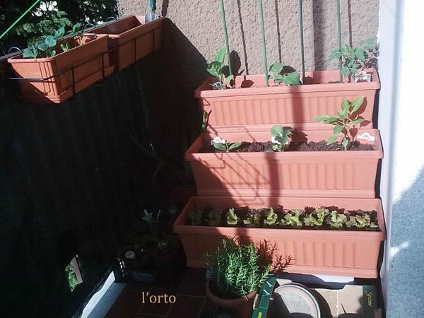 Bouquet di fantasia il mio orto sul balcone for Orto sul balcone
