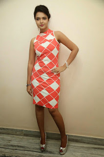 Actress Marina Ihim Picture Gallery in Short Dress at Romance With Finance Press Meet  6.jpg