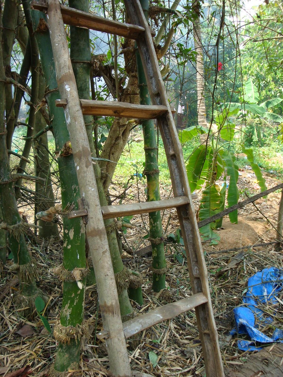 Va de fibras escalera de bamb india - Escaleras de bambu ...
