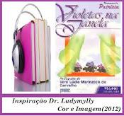 Áudio Book Violetas na Janela