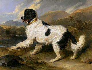 boatswain dog. i knew that, but what didn\u0027t know was that he also kept a pair of newfoundland dogs, called thunder and boatswain. boatswain dog n