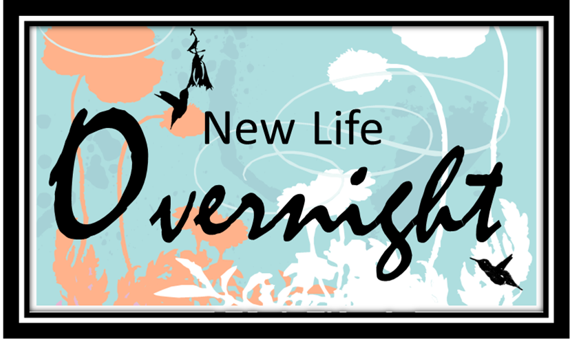 New Life Overnight