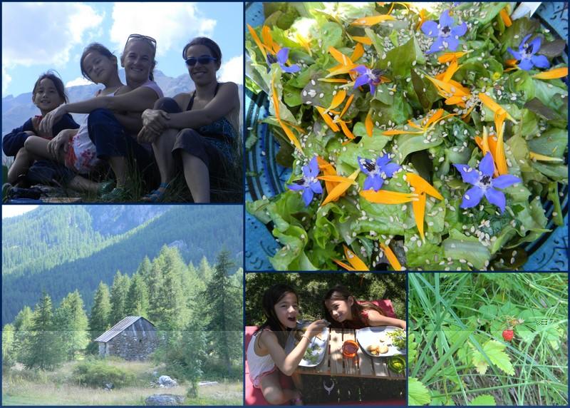 Jardin lilikoi salade aux fleurs et fraises des bois for Jardin aux fleurs