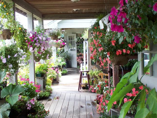 Ewa in the garden 12 most beautiful wooden porch ideas for Pictures of beautiful front porches