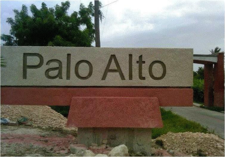 Palo Alto Barahona.