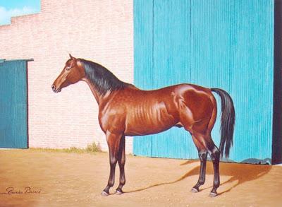 caballos-paisajes