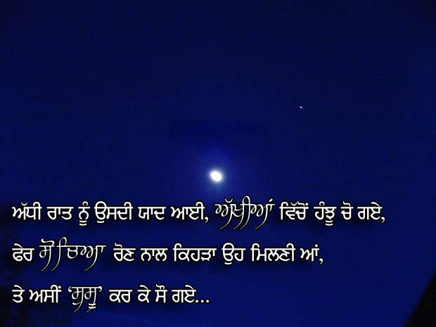 Very Funny Punjabi Quotes