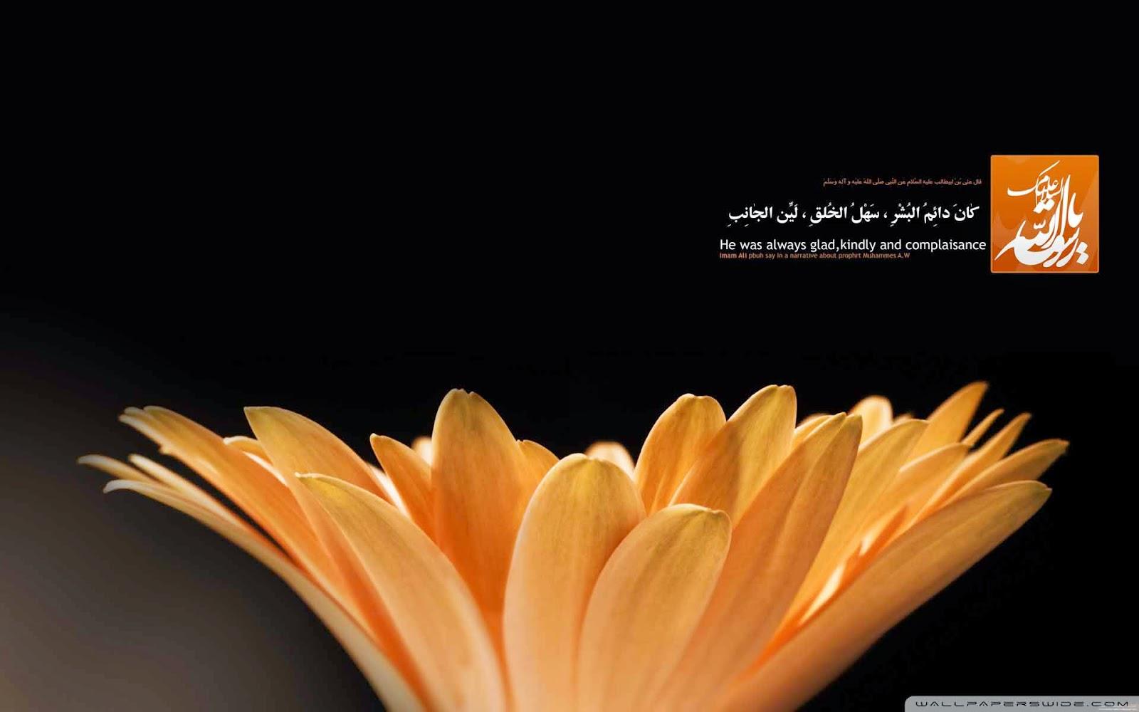 prophet flower wallpaper