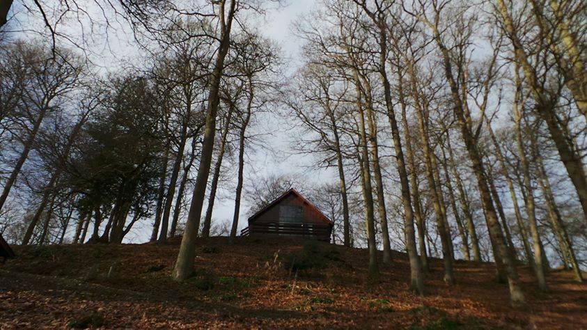 Review of Penllwyn Lodges Wales