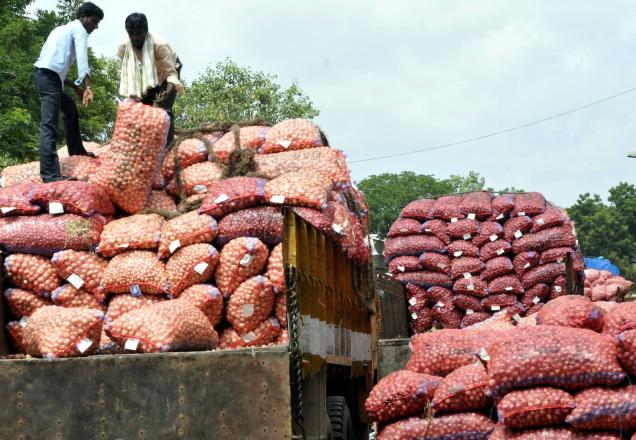 Government Has Decided To Lift The Ban On The Export Of Onions