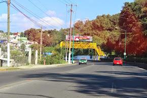 Agiliza DGTE vialidad en Calle Bolivia