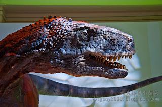 恐龍與哺乳類