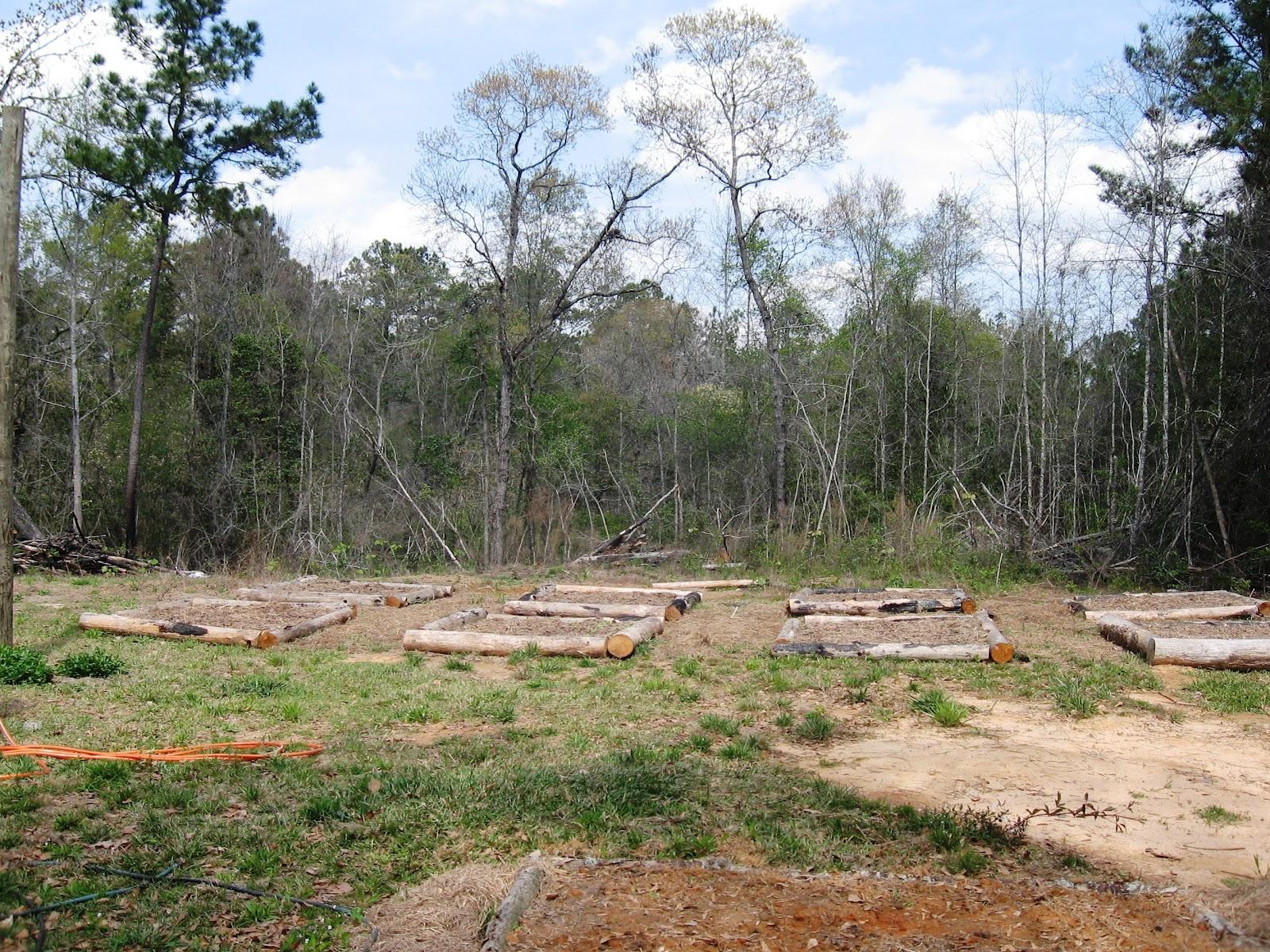 Sunflower Hill Homestead: Building an Above Ground ...