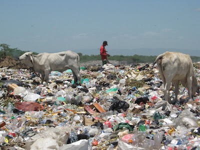 Land Pollution :: Garbage Pollution :: Air Pollution :: Smoke Pollution :: Pollution :: Types of Pollution :: Enviormental Pollution :: Pollution in Pakistan :: Pollution in India