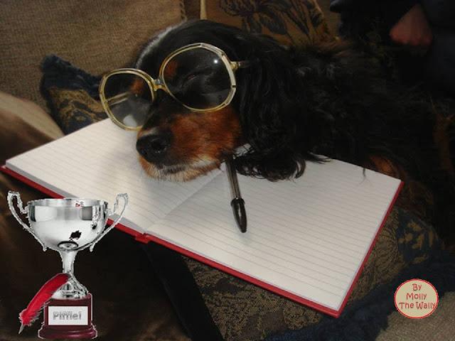 Molly The Wally & The Piffle Poison Pen Awards!